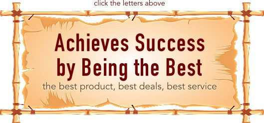 Achieves Success by Being the Best